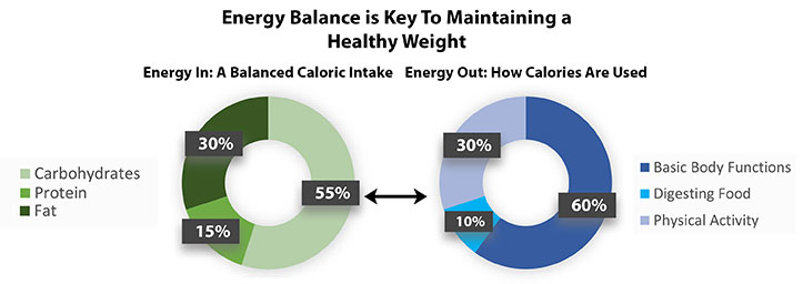 Energy balance is key to maintaining a healthy weight